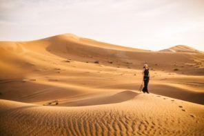 Zapisi iz Abu Dabija – III DEO – Safari iskustvo u Telal Al Ain Resortu