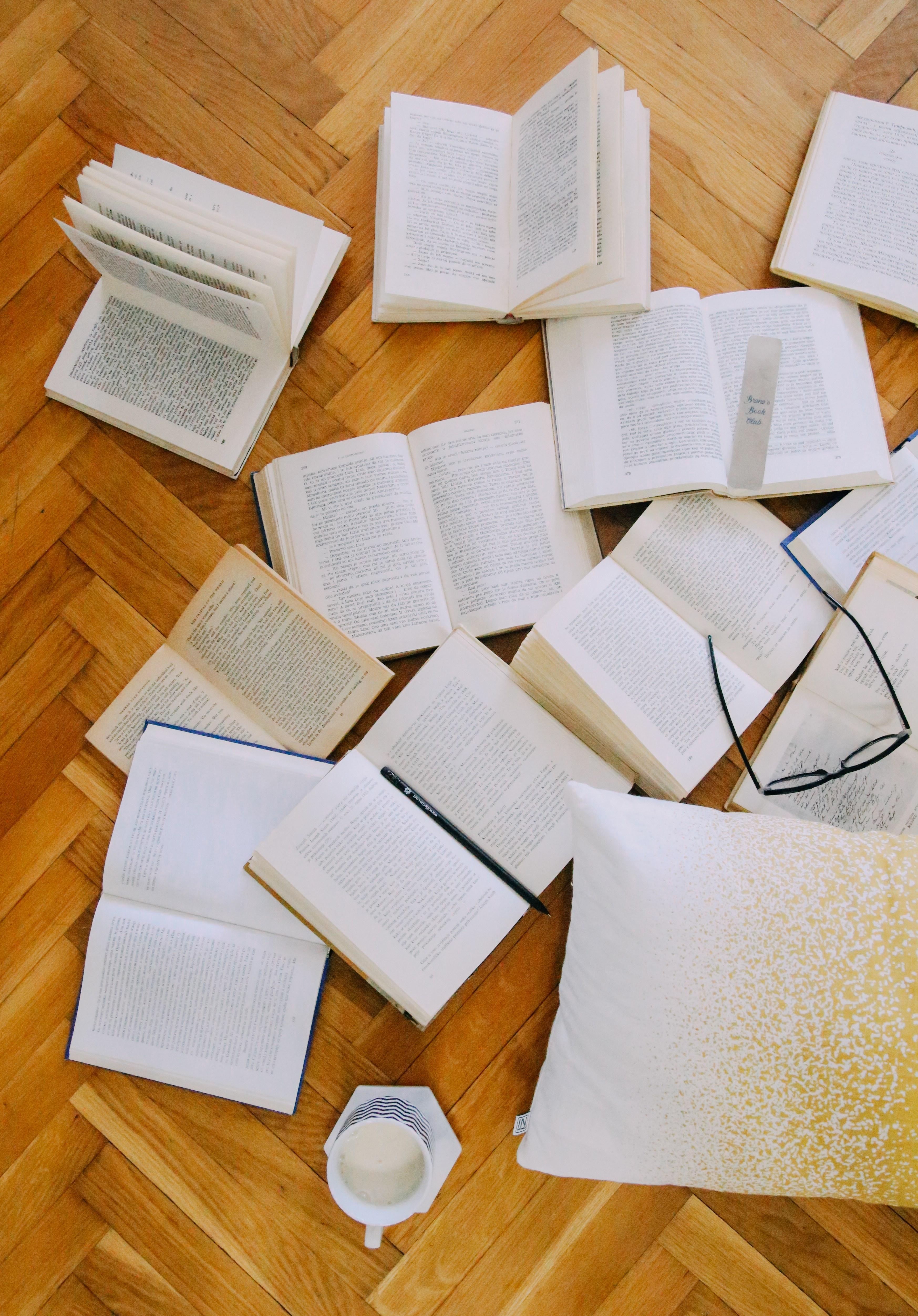 Književnost-Književna-Šuškanja-Šta-Čitati